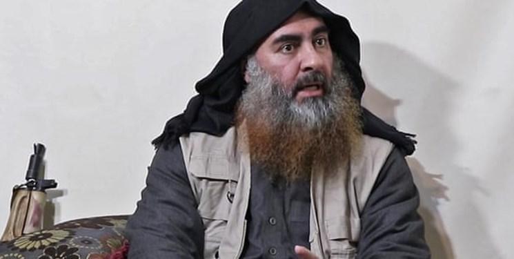 آمریکایی ها چه بلایی سر جسد ابوبکر البغدادی آورد؟