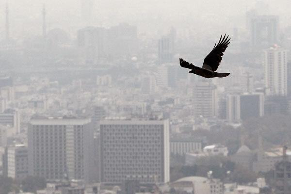 تشکیل جلسه کمیته اضطرار آلودگی هوای تهران ، مدارس فردا تعطیل می شوند؟