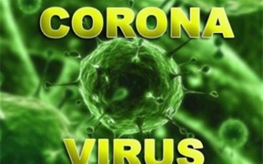 ابتلای 40 گردشگر آمریکایی به ویروس کرونا