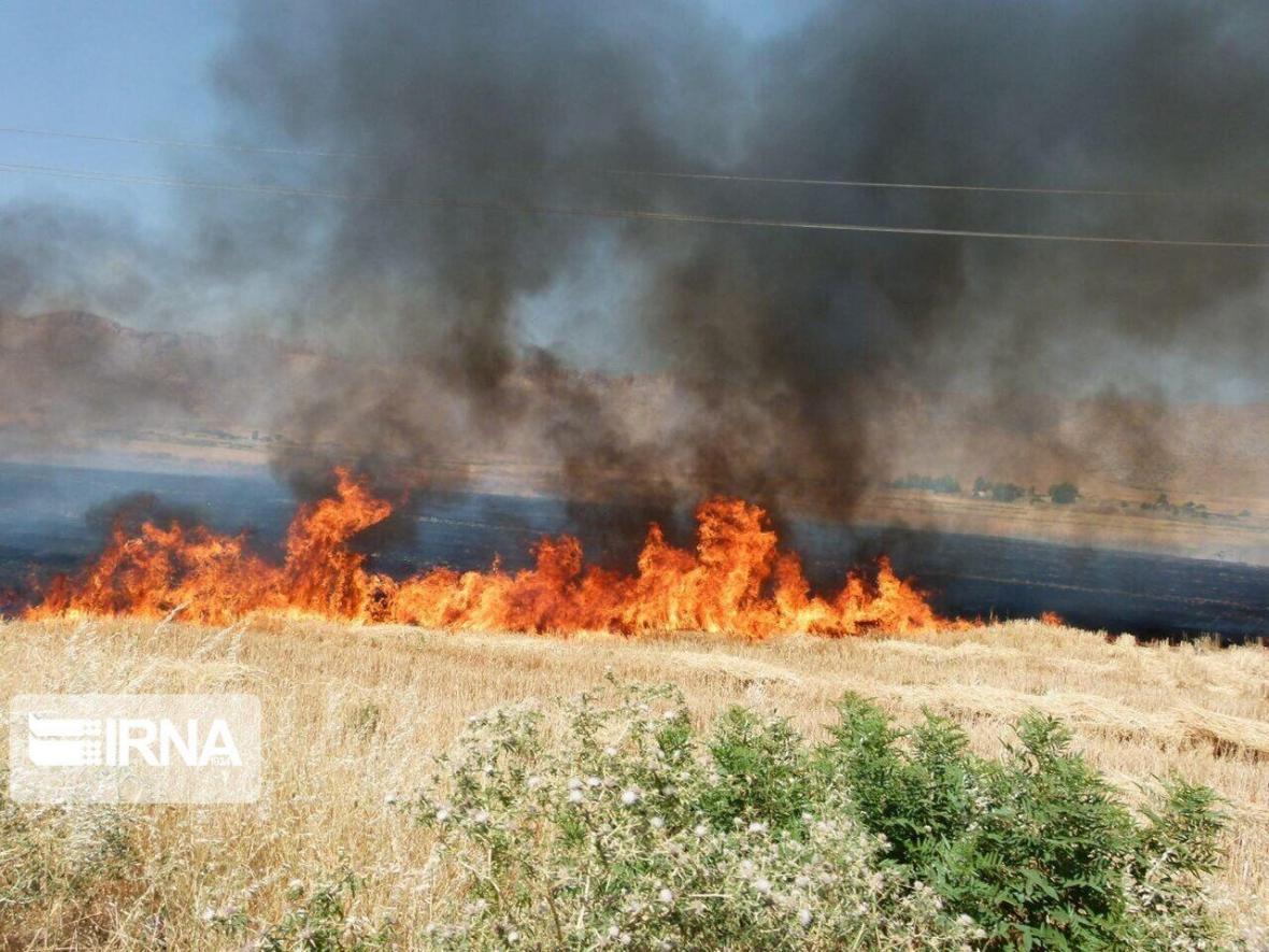 خبرنگاران هشدار جهادکشاورزی خراسان شمالی به آتش سوزی در گندمزارها