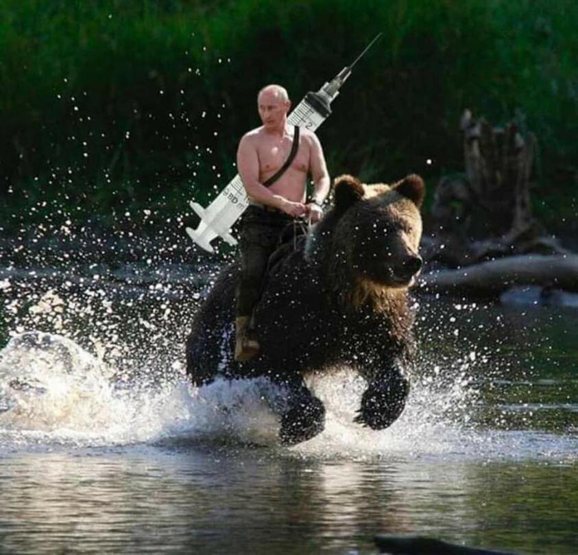 پوتین سوار بر خرس با واکسن اسپوتنیک به جنگ کرونا می رود