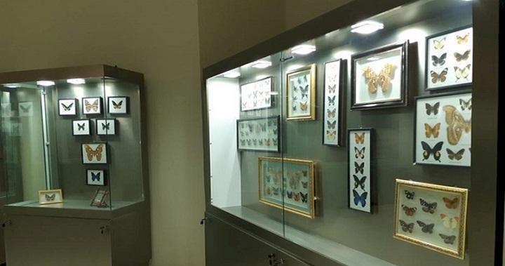 ثبت موزه تاریخ طبیعی و علم و فناوری ارومیه در کمیته بین المللی موزه ها