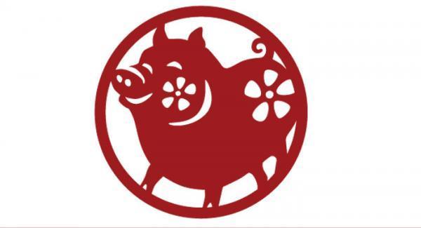 طالع بینی چینی متولدین سال خوک