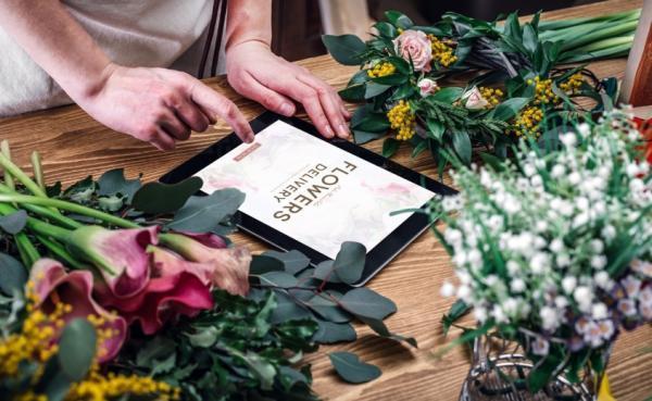 معرفی بهترین گیاهان آپارتمانی برای هدیه دادن به اضافه روش نگهداری آن ها