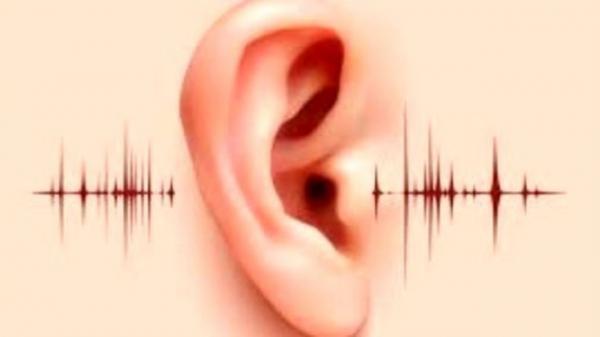 دستگاه های خدمات رسان، ناشنوایان را کمک نمایند